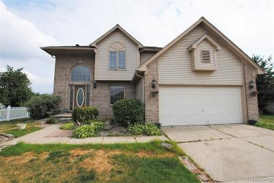 Macomb Twp Single Family Home For Sale: 15662 Clinton Avenue