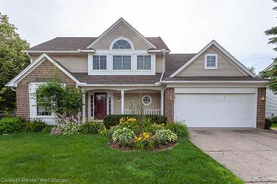 Novi Single Family Home For Sale: 47123 Scarlet Drive