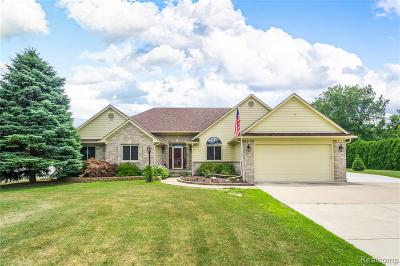 Allen Park, Lincoln Park, Southgate, Wyandotte, Taylor, Riverview, Brownstown Twp, Trenton, Woodhaven, Rockwood, Flat Rock, Grosse Ile Twp, Dearborn, Gibraltar Single Family Home For Sale: 27001 Van Horn Road