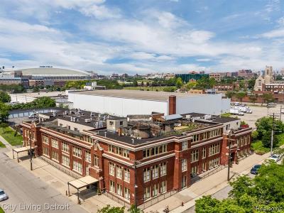 Detroit Condo/Townhouse For Sale: 1395 Antietam Avenue #39