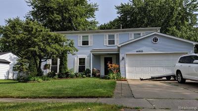 Novi Single Family Home For Sale: 41925 Cherry Hill Road