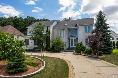 West Bloomfield Twp Single Family Home For Sale: 6337 Golden Lane