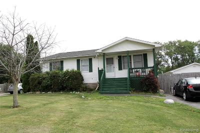 Monroe County Single Family Home For Sale: 7462 Canal Street