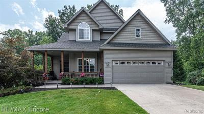 Waterford Single Family Home For Sale: 4163 West Pointe Drive
