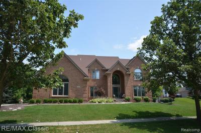 Novi Single Family Home For Sale: 23705 Wintergreen Circle