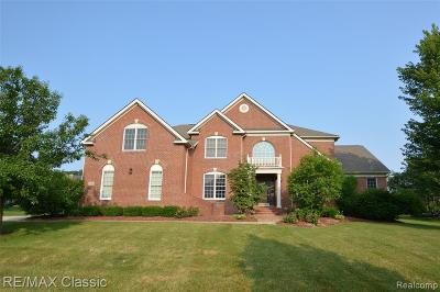 Novi Single Family Home For Sale: 25020 Hadlock Drive