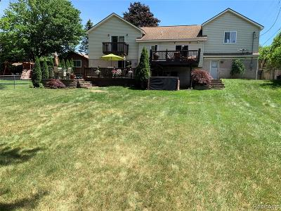 Waterford Single Family Home For Sale: 3601 Dill Drive