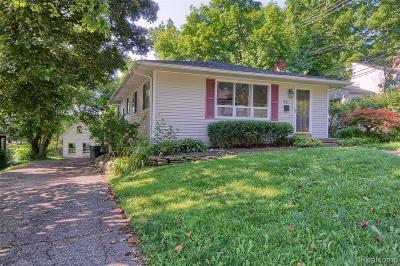Northville Single Family Home For Sale: 131 Walnut Street