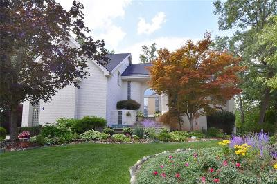 West Bloomfield Twp Single Family Home For Sale: 5753 Royal Wood