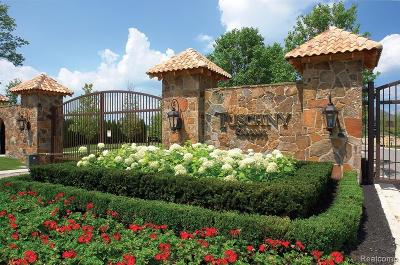 Novi Residential Lots & Land For Sale: 48810 Castello Court