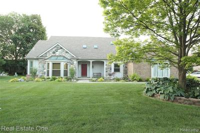 Livonia Single Family Home For Sale: 35096 Pembroke Avenue