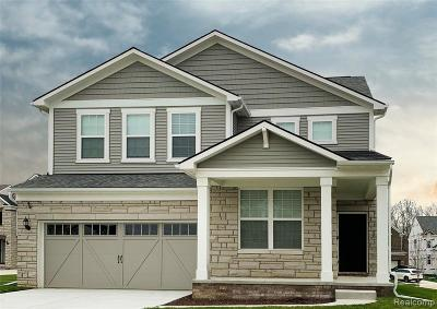 Novi Single Family Home For Sale: 44203 Sedgwick Boulevard
