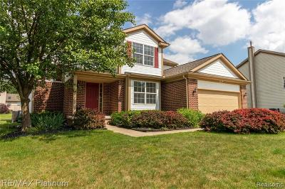 Hartland Twp Single Family Home For Sale: 2388 Matthew Court