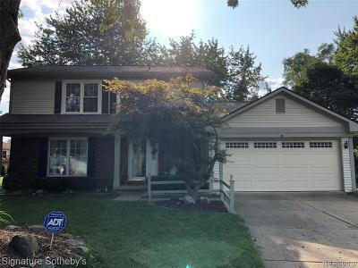 Novi Single Family Home For Sale: 39988 Jason Court