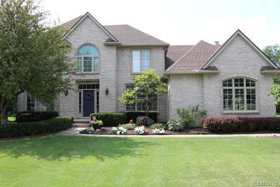 Oakland Twp Single Family Home For Sale: 4119 Ridge Side Drive
