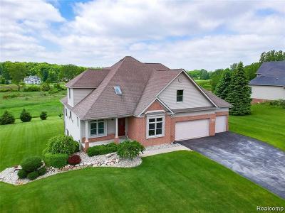 Hartland Twp Single Family Home For Sale: 701 Saddle Club Lane