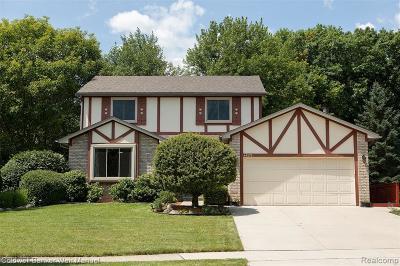 Novi Single Family Home For Sale: 44570 Concord Drive