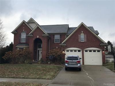 Novi Single Family Home For Sale: 40620 Camborne Lane
