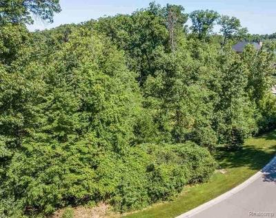 Bloomfield Twp Residential Lots & Land For Sale: Lot 2701 Turtle Ridge Drive