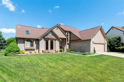 Novi Single Family Home For Sale: 44514 Stone Road