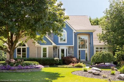 Northville Single Family Home For Sale: 17175 Tall Pines Court