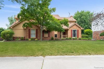 Rochester Hills Single Family Home For Sale: 887 Ten Point
