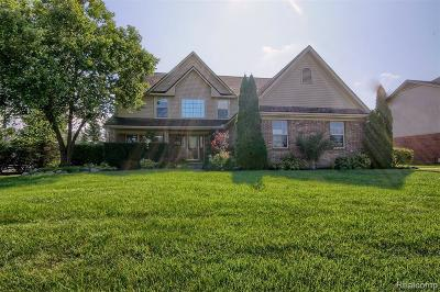 Brownstown Twp Single Family Home For Sale: 25069 Pine Ridge Drive