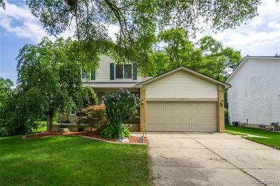 Rochester Hills Single Family Home For Sale: 2517 Dearborn Avenue