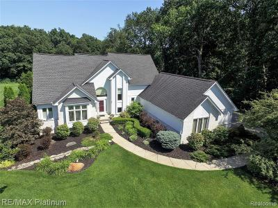 Hartland Twp Single Family Home For Sale: 1506 Thorn Ridge Drive