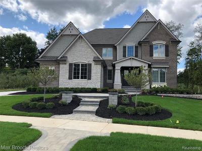Novi Single Family Home For Sale: 22435 Montebello Court