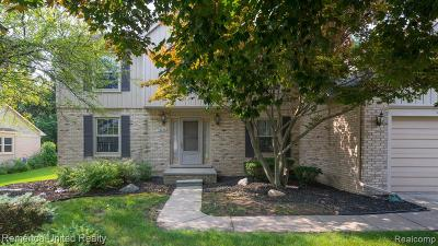 Novi Single Family Home For Sale: 45225 Dunbarton Drive