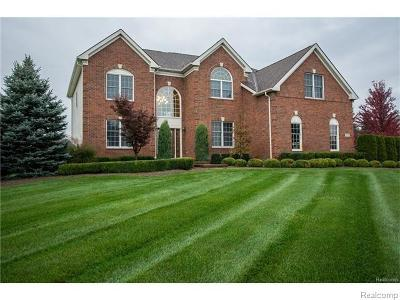 Milford Twp Single Family Home For Sale: 1772 Bristol Drive