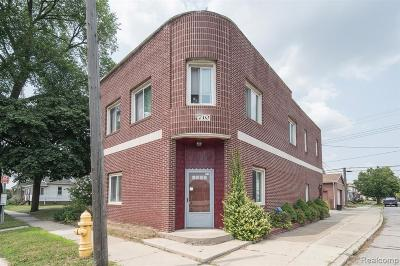 Wyandotte Multi Family Home For Sale: 710 Ford Avenue