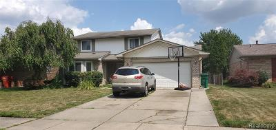 Macomb Twp Single Family Home For Sale: 46376 Meadow Lane