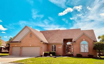 Macomb Twp Single Family Home For Sale: 22058 Sunningdale Drive