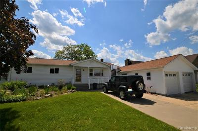Single Family Home For Sale: 13174 Lake Shore Drive