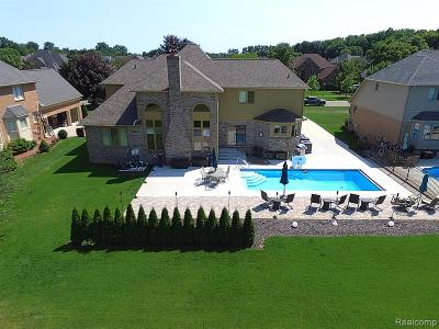 Shelby Twp Single Family Home For Sale: 13235 Towering Oaks Drive