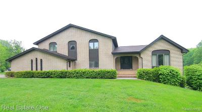 Milford Twp Single Family Home For Sale: 925 E Buno Court