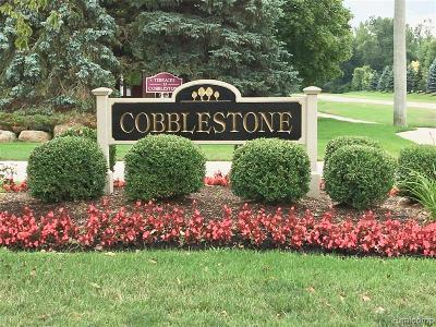 Macomb Twp Condo/Townhouse For Sale: 52219 Heatherstone Avenue