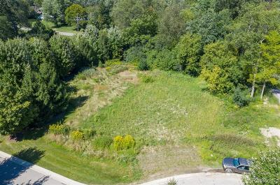 Bloomfield Hills Residential Lots & Land For Sale: 115 Bridgeview Drive