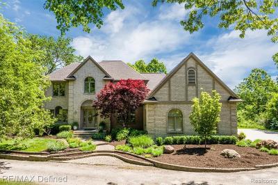 Oakland Twp Single Family Home For Sale: 4205 Sheldon Road