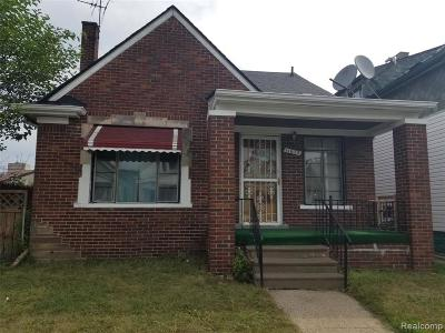 Hamtramck Single Family Home For Sale: 11672 Mitchell Street