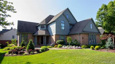 Novi Single Family Home For Sale: 20997 Chase Drive
