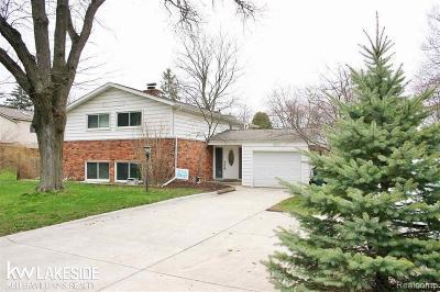 Troy Single Family Home For Sale: 2966 Bolingbroke Drive