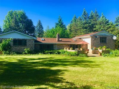 Addison Twp Single Family Home For Sale: 727 E Romeo Road