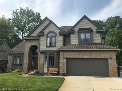 Commerce Twp Single Family Home For Sale: 175 Liza Lane