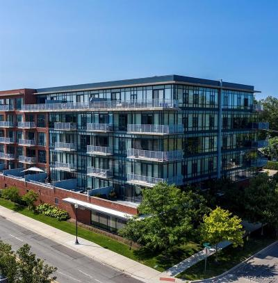 Royal Oak Condo/Townhouse For Sale: 101 Curry Avenue