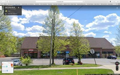Farmington Hills Commercial For Sale: 29829 W W 9 Mile Road