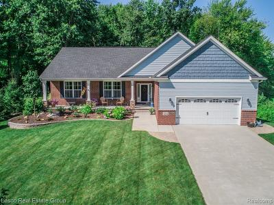 Fenton MI Single Family Home For Sale: $365,000