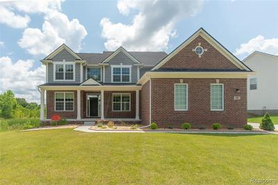 Milford Twp Single Family Home For Sale: 597 Olivia Drive